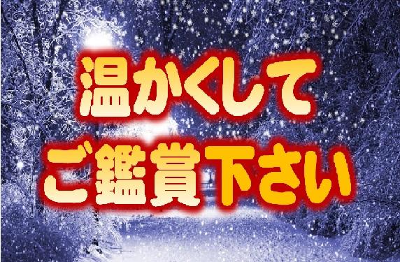 nonoichi-fuyu.jpg